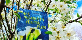 Apă proaspătă pentru flori